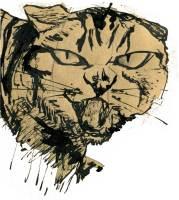 Fierce cat by Katie Chappell