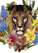 Lion Head by Flox