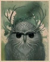 Snow Owl by Jeff Soto