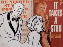 It takes a stud by Simon Lovelace