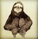 sloth knee hug