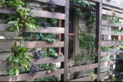 small-gardens-weetree-wall