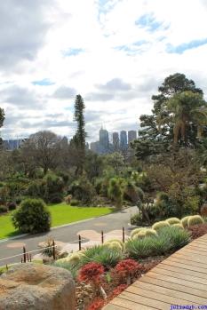 Botanic Gardens Melbourne Australia August 2012-41