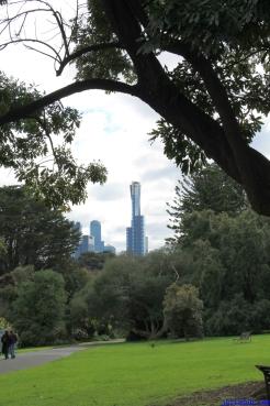 Botanic Gardens Melbourne Australia August 2012-44 eureka skydeck in distance