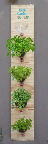 inspo vertical herb garden