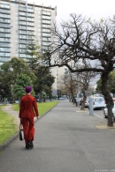Random Melbourne Australia August 2012 - 55