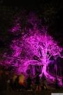Art in the Dark Nov 2012 (14)