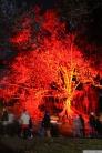 Art in the Dark Nov 2012 (15)