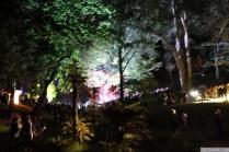 Art in the Dark Nov 2012 (16)