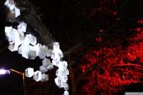Art in the Dark Nov 2012 (18)
