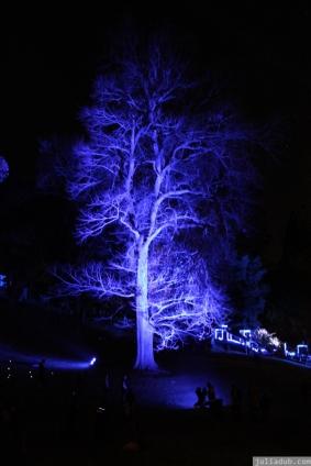 Art in the Dark Nov 2012 (19)