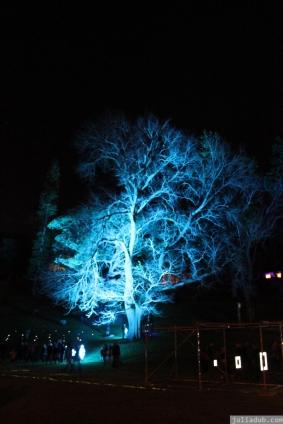 Art in the Dark Nov 2012 (20)