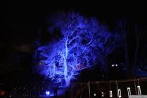 Art in the Dark Nov 2012 (21)