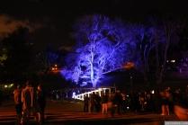 Art in the Dark Nov 2012 (22)