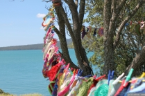 NZ Sculpture OnShore Nov 2012 (113) Madpanic Collective 'Southlandish aka The Dishcloth Project'