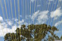 NZ Sculpture OnShore Nov 2012 (65) Gaye Jurisich 'Lean-to'