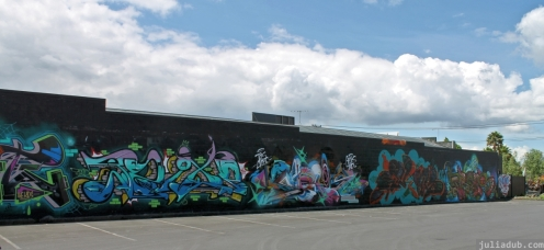 Graffiti Auckland December 2012 (4)
