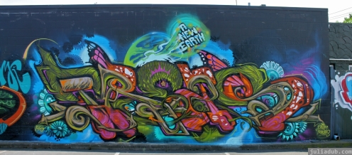 Graffiti Auckland December 2012 (6)