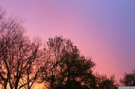 pratt st sunset