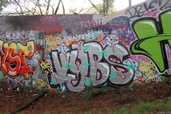 Western Springs June 2013 024