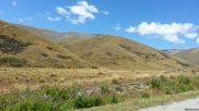 South Island Summer 2014 023