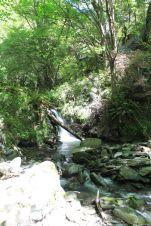 South Island Summer 2014 075