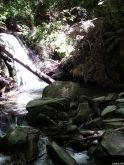 South Island Summer 2014 081
