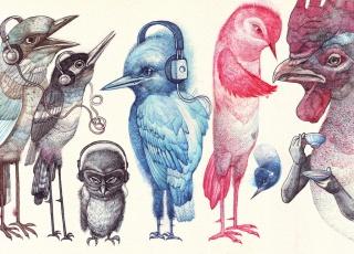 Jan Mraz - Vtáci