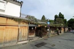 Bonsai, Japan, 2015 029