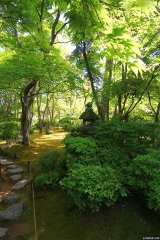 Kyoto, Japan, 2015 005