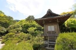 Kyoto, Japan, 2015 007