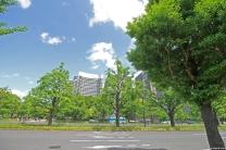 Nature, Japan, 2015 031